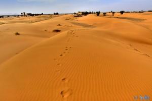 ...Deine Spuren im Sand *träller* - Merzouga - Erg Chebbi – Marokko