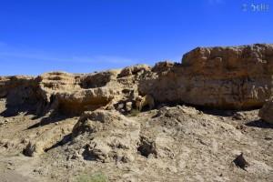 Nicol sucht Schatten! Skoura - Marokko
