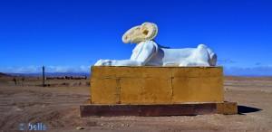 Requisit - Atlas Corporation Studios Ouarzazate – Marokko