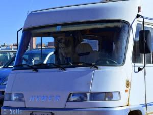Nicol erwartet uns schon sehnsüchtig! - Eeeeeeeeendlich kommt ihr da wieder raus! - Atlas Corporation Studios Ouarzazate – Marokko