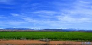 Im Hintergrund der Hohe Atlas - On the Road - R210 – Marokko