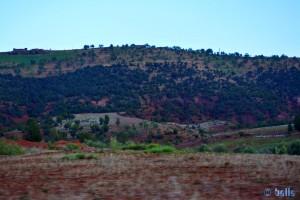 On the Road – R304 – Marokko