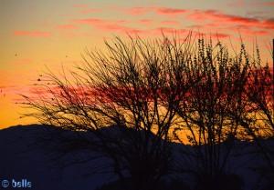 Sonnenrot in Martil - Marokko