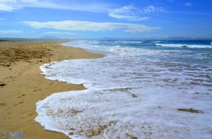 ...die ich gestern noch fand... *träller* - Playa de los Lances Norte - Tarifa – Spain