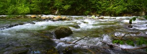 River Pesio - Vigna - Via Certosa, 206A, 12013 Chiusa di Pesio CN, Italien – Panorama-Bild