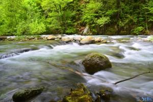 River Pesio - Vigna - Via Certosa, 206A, 12013 Chiusa di Pesio CN, Italien – lange Belichtungszeit