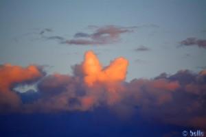 Ein Herz am Himmel - Platja dels Eucaliptus - Spain