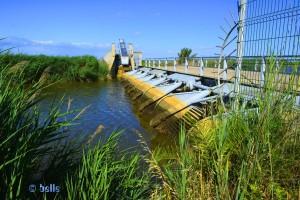 Automatischer Wasserreiniger am Delta del Ebre – Spain – (Bild 3)