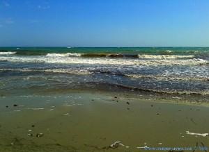Playa de Torre Derribada mit einer Menge Algen – Spain