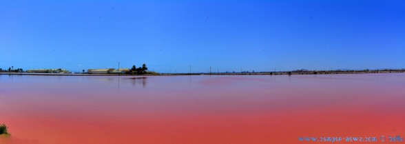 Salinas with red Water - San Pedro del Pinatar – Spain