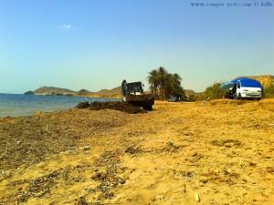 Der Strand wird von den Algen gesäubert – Playa de las Palmeras – Spain