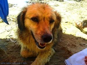 Jetzt habe ich mir mein Pappa aber verdient! Nicol nach der Schwimmstunde - Playa de las Palmeras – Spain