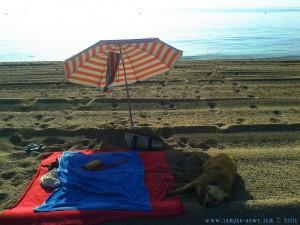Relaxen MUSS sein - Playa las Salinas – Spain