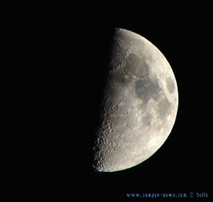 Halfmoon at Playa las Salinas – Spain – 21:08:46