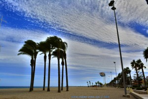 LEER! Playa la Romanilla – Spain