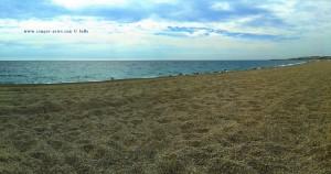 Allein mit den Möwen - Playa las Salinas – Spain