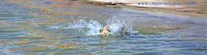 Splashhhhh - Nicol beim Tauch-Kurs - Playa las Salinas - Playa la Romanilla - Spain