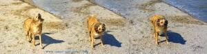 Nicol nach dem Tauch-Kurs - Playa las Salinas - Playa la Romanilla – Spain