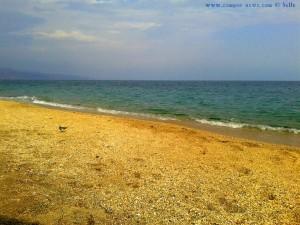 Strandläufer am Playa las Salinas – Spain