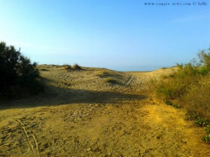 Dunes to the Playa Almerimar – Spain
