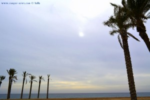 Grau am Playa las Salinas – Spain (11:10)