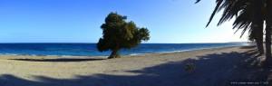 Nicol am Playa Ventilla – Spain