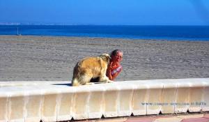 Küsschen für Mama - Playa las Salinas – Spain