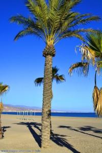Lange Schatten am Playa las Salinas – Spain