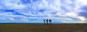 Möwen am Playa las Salinas – Spain