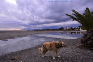 Nicol in Puerto Motril – Spain