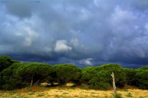 Dicke fette Wolken - Playa de los Lances Norte - Tarifa – Spain