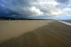 Flugsand am Playa de los Lances Norte - Tarifa – Spain