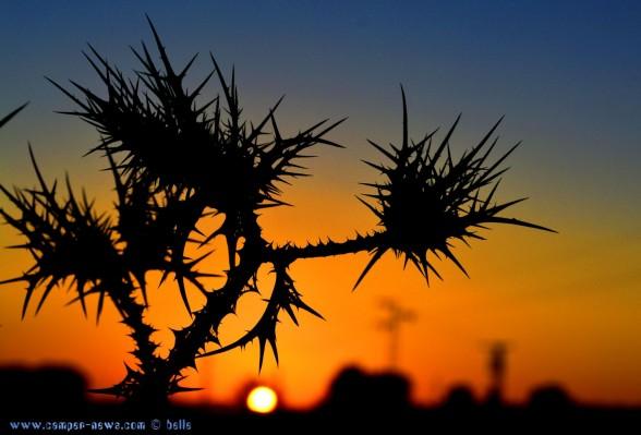 Sunset at Laguna de los Tollos – Spain → 18:06:24