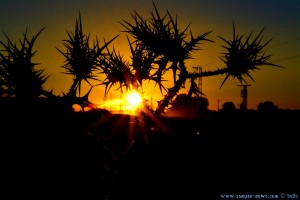 Sunset at Laguna de los Tollos – Spain → Aperture priority → 55mm → 18:00:52