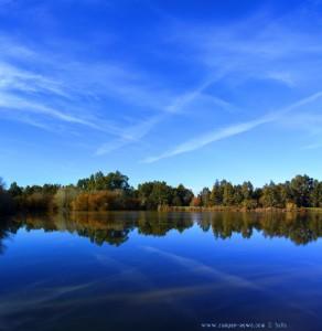 My View today - Lake of Las Doblas - Spain