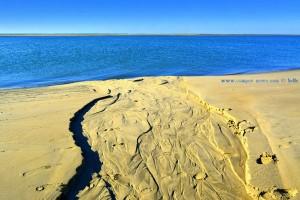 Spuren im Sand - Dunas de El Portil – Spain