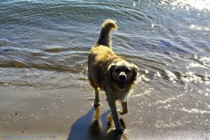 Guck mal! Ich war baden - Nicol at Dunas de El Portil – Spain