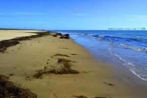 Wege die wir gehen... Dunas de El Portil – Spain