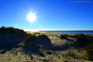 Nicol at Dunas de El Portil – Spain