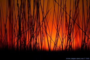 Sunset at Dunas de El Portil – Spain → nur ein paar Minuten später...