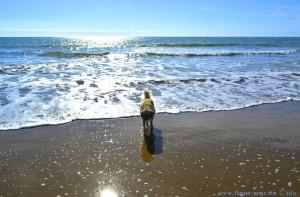 Nöööö - das Salzwasser schmeckt nicht! Nicol at Playa de El Portil – Spain