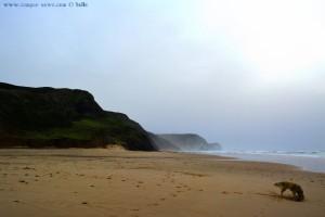 Nicol at Praia da Cordoama - Vila do Bispo – Portugal
