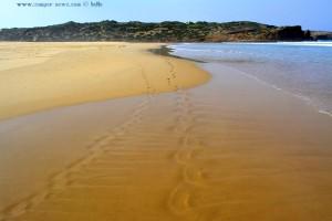 ...die ich gestern noch fand... *träller* - Praia da Bordeira – Portugal