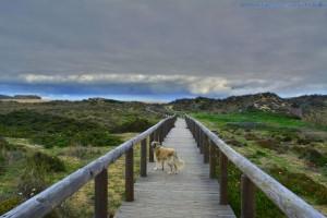 My View today - Praia da Bordeira – Portugal