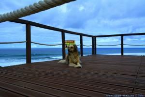 Nicol at Praia do Vale dos Homens – Portugal