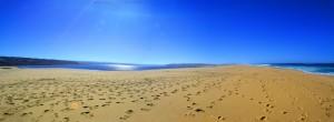 Lagoa de Santo André and Praia da Costa de Santo André – Portugal
