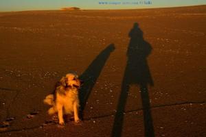 Lange Schatten am Praia da Costa de Santo André – Portugal