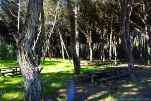 Picknick-Area mit Brunnen nahe dem Stellplatz in Costa de Lavos – Portugal