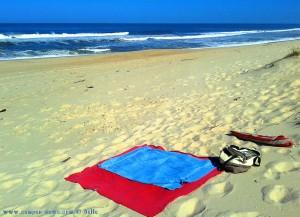 My View today - Praia da Murtinheira – Portugal