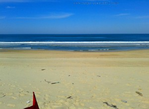 My View today - Praia da Murtinheira – Portugal